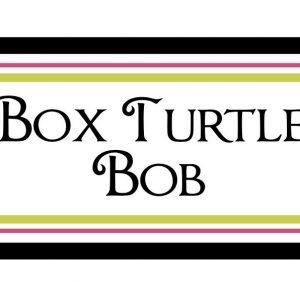 Box Turtle Bob